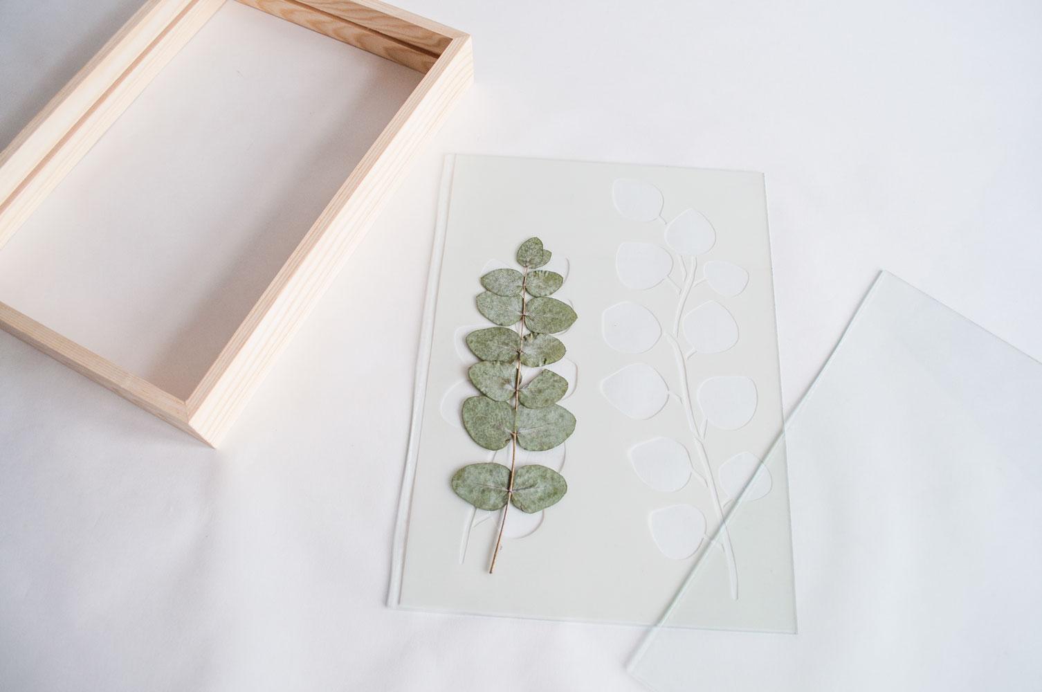 eucalyptuslijst stap1