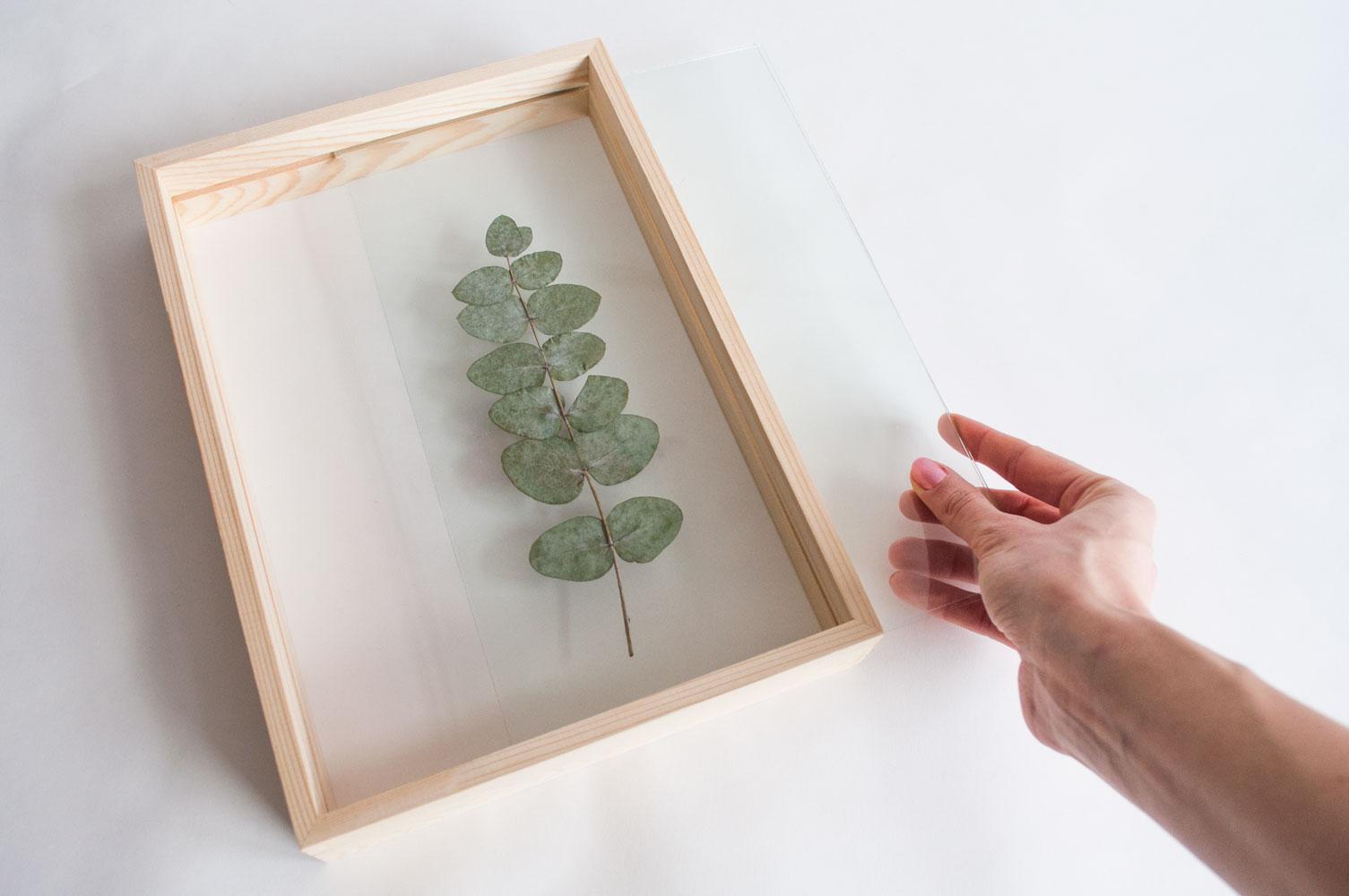 eucalyptuslijst stap2