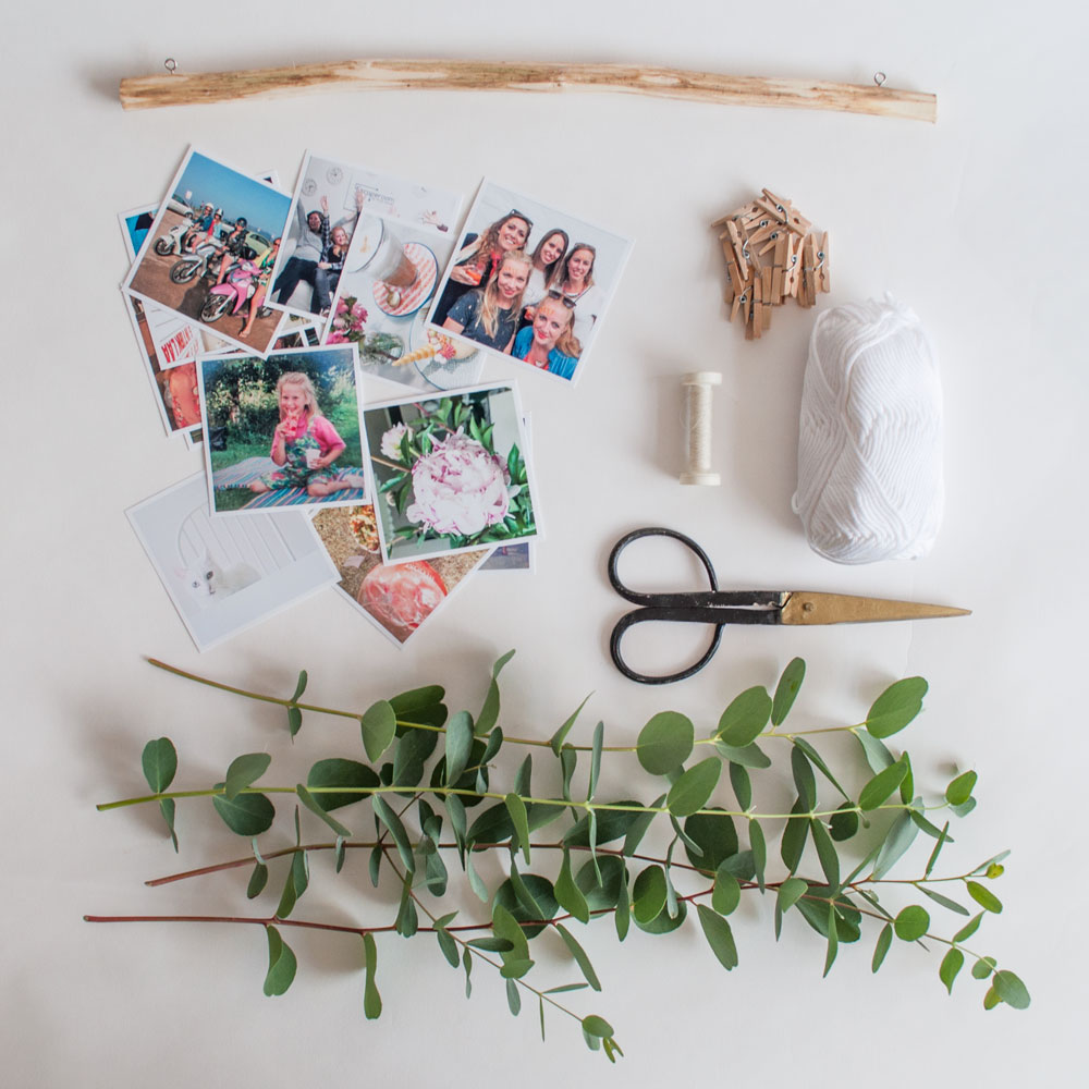 foto muurhanger eucalyptus benodigdheden