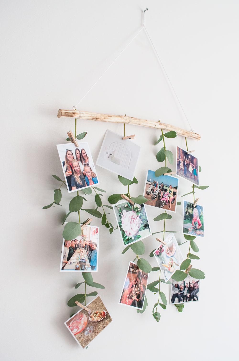 foto muurhanger eucalyptus resultaatlinks