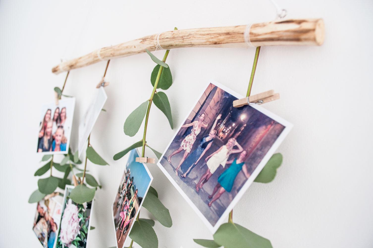 foto muurhanger eucalyptus resultaatperspectief