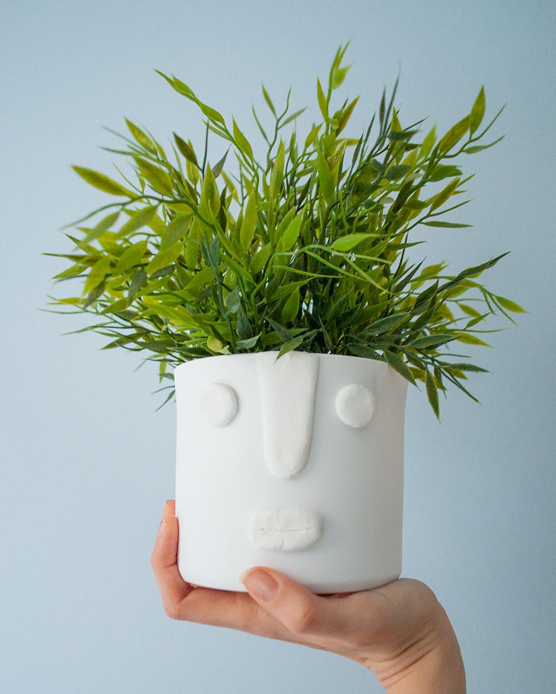 diy face planter resultaat hand LR