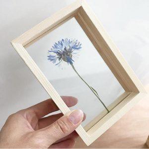 dubbelglas fotolijst heleen