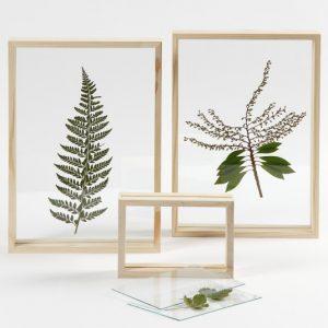 dubbelglas lijst bladeren