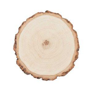 boomschijfje