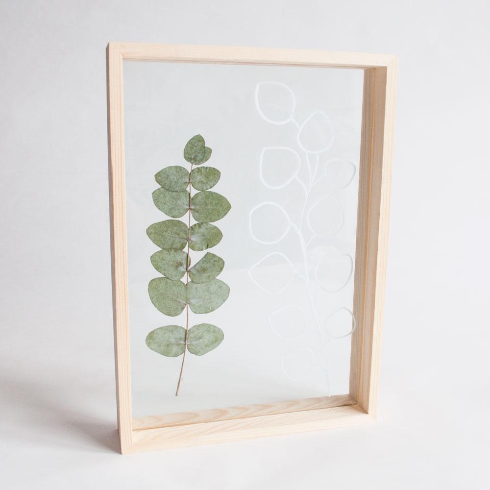 eucalyptuslijst resultaat