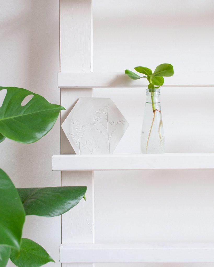 planten kopstekken sfeer